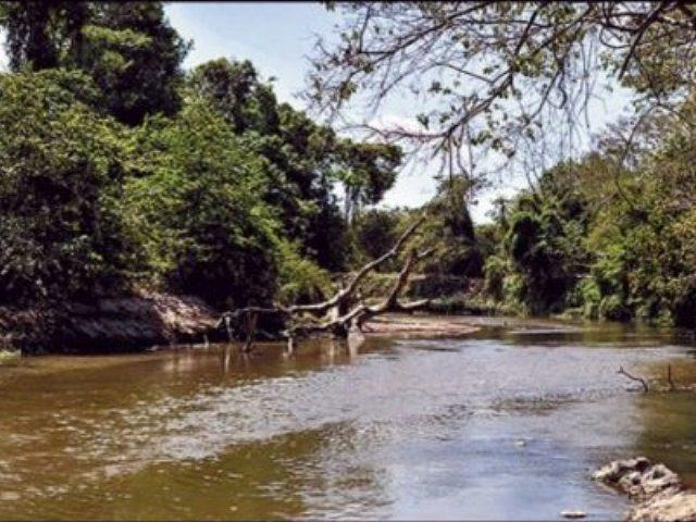 Consejo de Estado ratificó suspensión de proyecto minero del Cerrejón en La Guajira