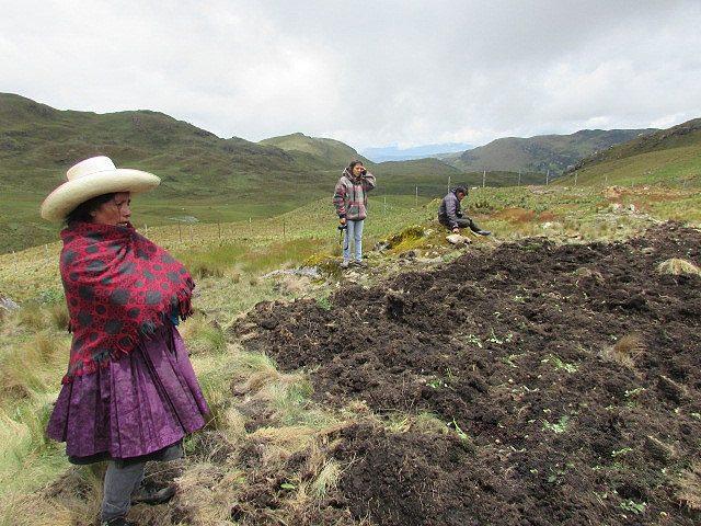 Nuevamente trabajadores de Minera Yanacocha ingresan a terrenos de Máxima Acuña y destruyen su choza y sus cultivos