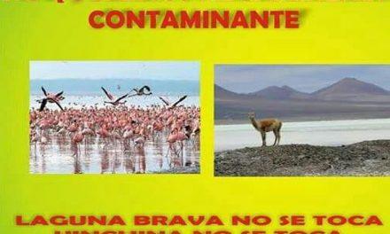 Nueva resolución autoriza uso minero en Laguna Brava