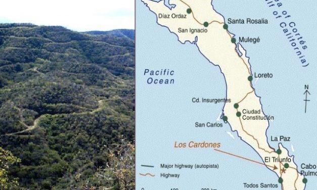 Tribunal cancela autorización que le dio la Semarnat al proyecto minero Los Cardones