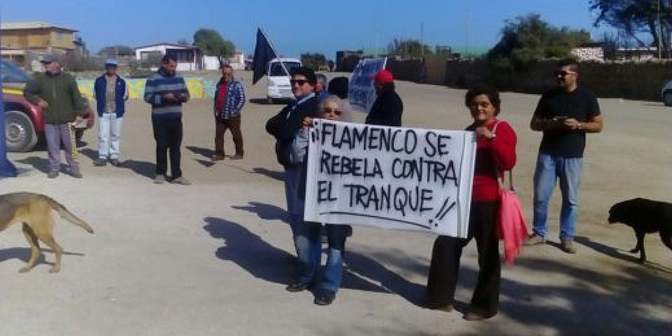 Pobladores de Flamenco denuncian a minera por destrucción del ecosistema en caleta de Atacama