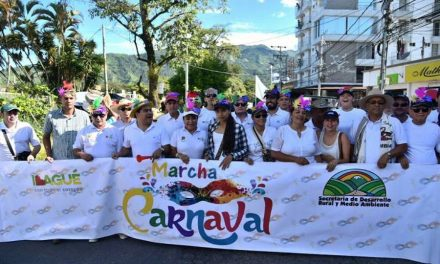 Marcharon en Ibagué contra proyectos minerosa gran escala en el Tolima