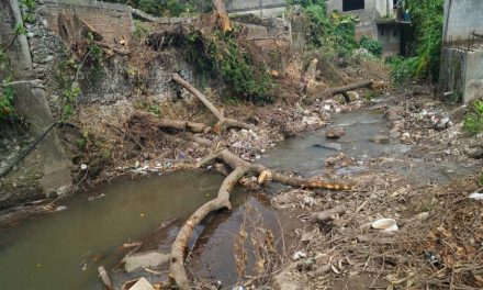 Minera México contamina arroyo en Zacatecas