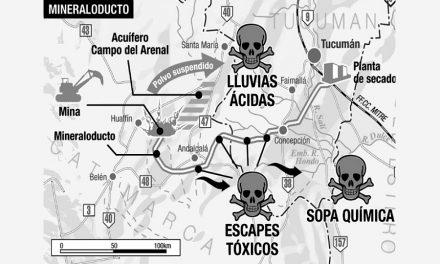 Por un nuevo fallo, levantaron la suspensión de minera La Alumbrera