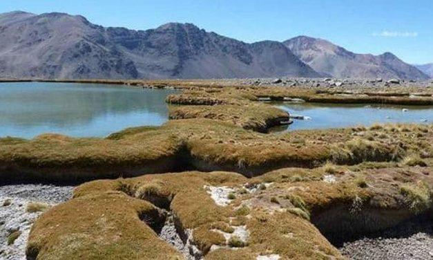 Confirman que minerachilena Pelambres contaminó suelo y aguas de San Juan