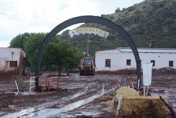 Revienta dique de relaves de mina y acaba con 20 hectáreas de una hacienda
