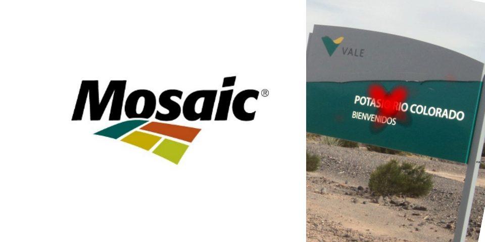 Vale Fertilizanes se asocia con Mosaic, pero Potasio Río Colorado no entra