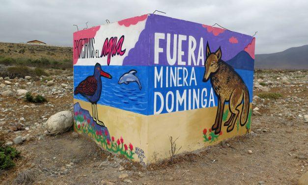 Científicos alertan a autoridades para que rechacen proyecto minero Dominga