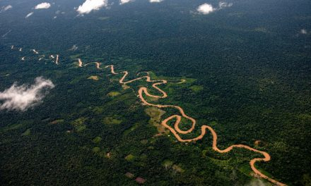 La justicia brasileña suspende decreto que abría la explotación minera en la Amazonia