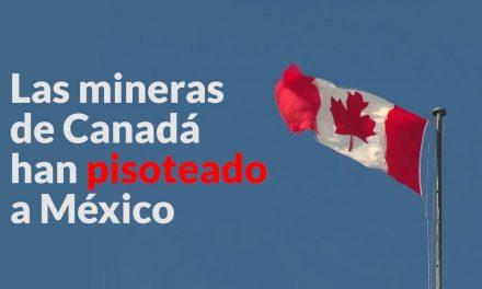 Minera canadiense causó daños a nativos en México
