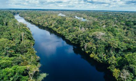 La nueva amenaza para el Amazonas: la minería