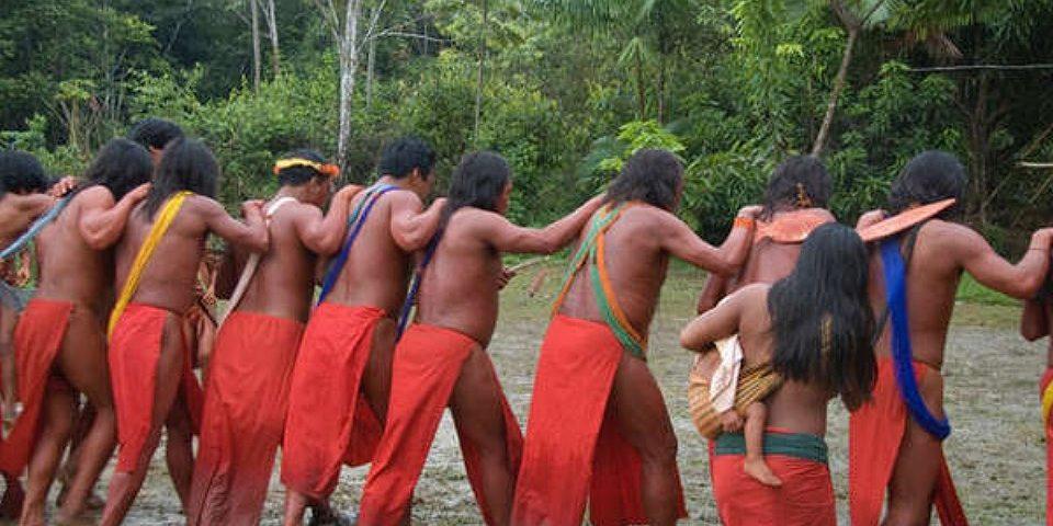 """Una tribu brasileña desafía a los mineros: """"nuestra vida depende de la vida de la tierra y de la selva"""""""