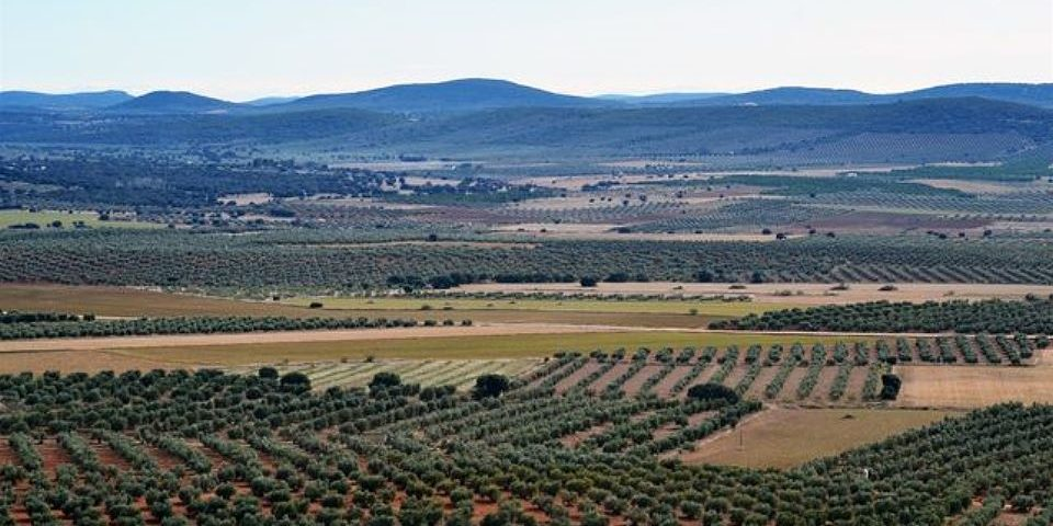 Triunfo popular en España: Gobierno deniega permiso a proyecto de explotación de tierras raras
