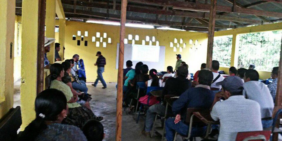 Minera De Níquel, Corrupción e Impunidad en El Estor