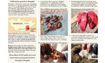 Uranio: ¿Chubut en Argentina como Ulaanbadrakh en Mongolia?