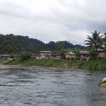 Consejo comunitario de Yurumanguí le gana pulso a minera Pacific Mines
