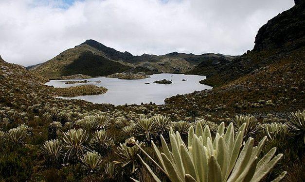 Tribunal de Santander admitió demanda contra explotación minera cerca del páramo de Santurbán