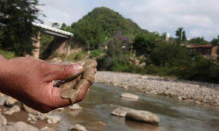 Minera canadiense con historial de despojo y muertos derrama cianuro al río Piaxtla
