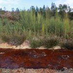 Reapertura de mina de cobre pone en pie de guerra a agricultores y mariscadores gallegos
