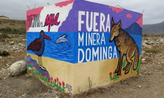 Proyecto Minera Dominga: El fantasma amenazante para el medioambiente