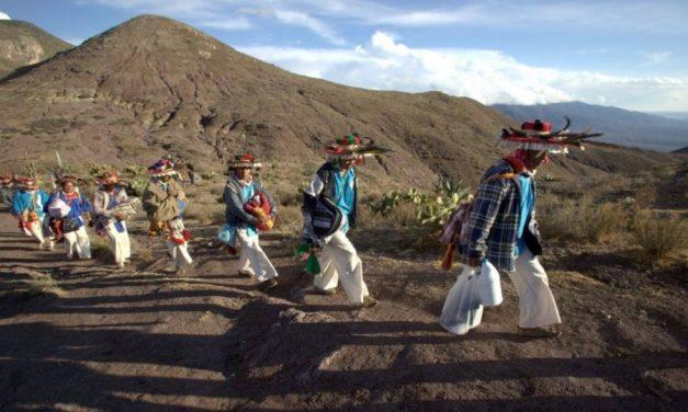 Huicholes «guardianes del peyote» y su lucha contra la minería