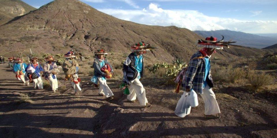 """Huicholes """"guardianes del peyote"""" y su lucha contra la minería"""