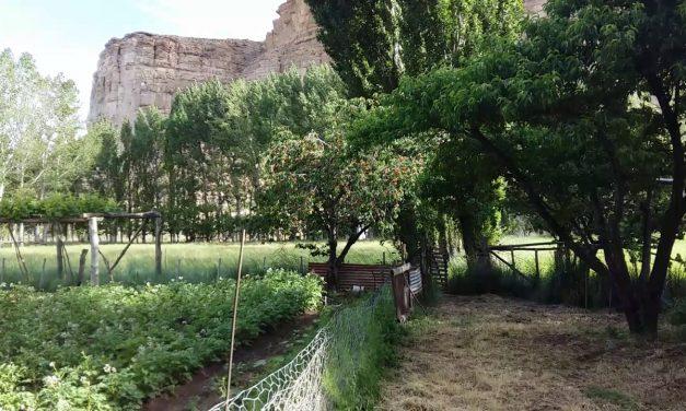 Declaración de productores agroganaderos de Paso del Sapo contra la megaminería