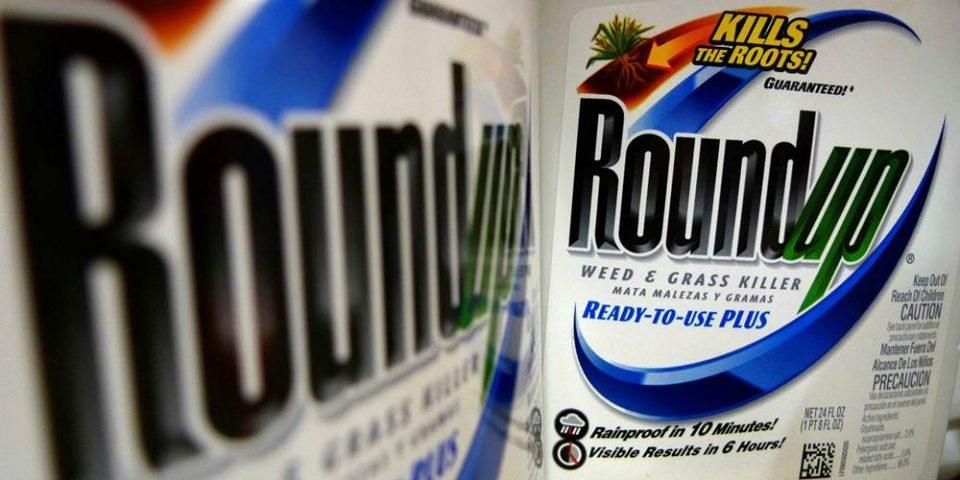 Jardinero afectado por cáncer logra condena millonaria a Monsanto-Bayer
