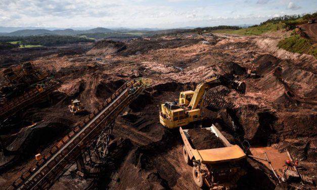 Más de 100 crímenes ambientales en 20 años