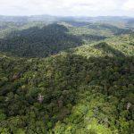El Gobierno francés detiene un megaproyecto de minería en la Amazonía
